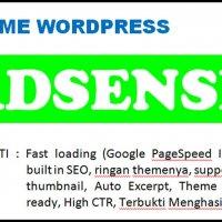 Theme WordPress Fast Loading Untuk Adsense Terbukti Menghasilkan